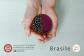 cartolina-gadget Brasile